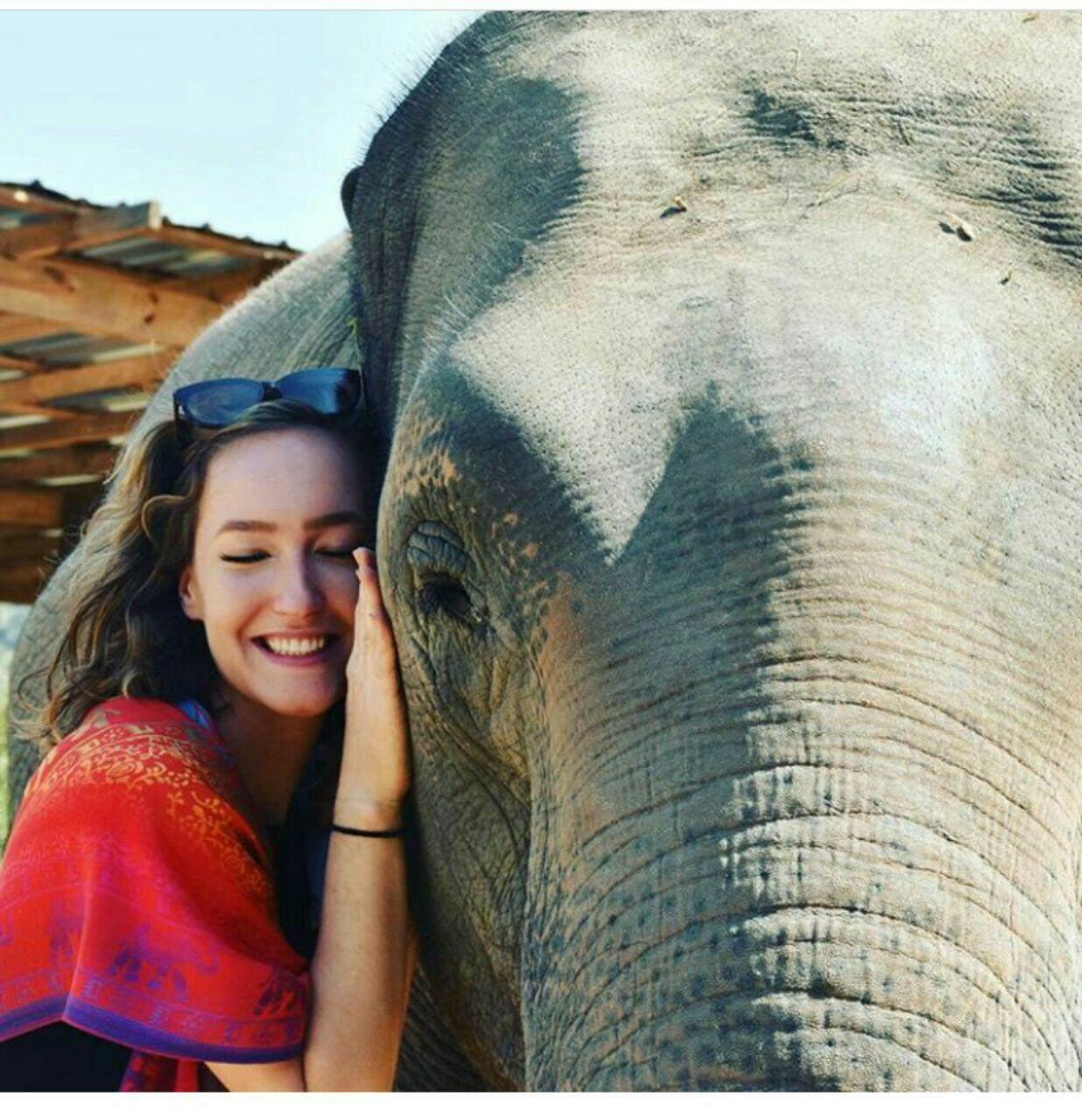 97 12 c33 569 - زندگی مشترک خانواده ای با فیل ها