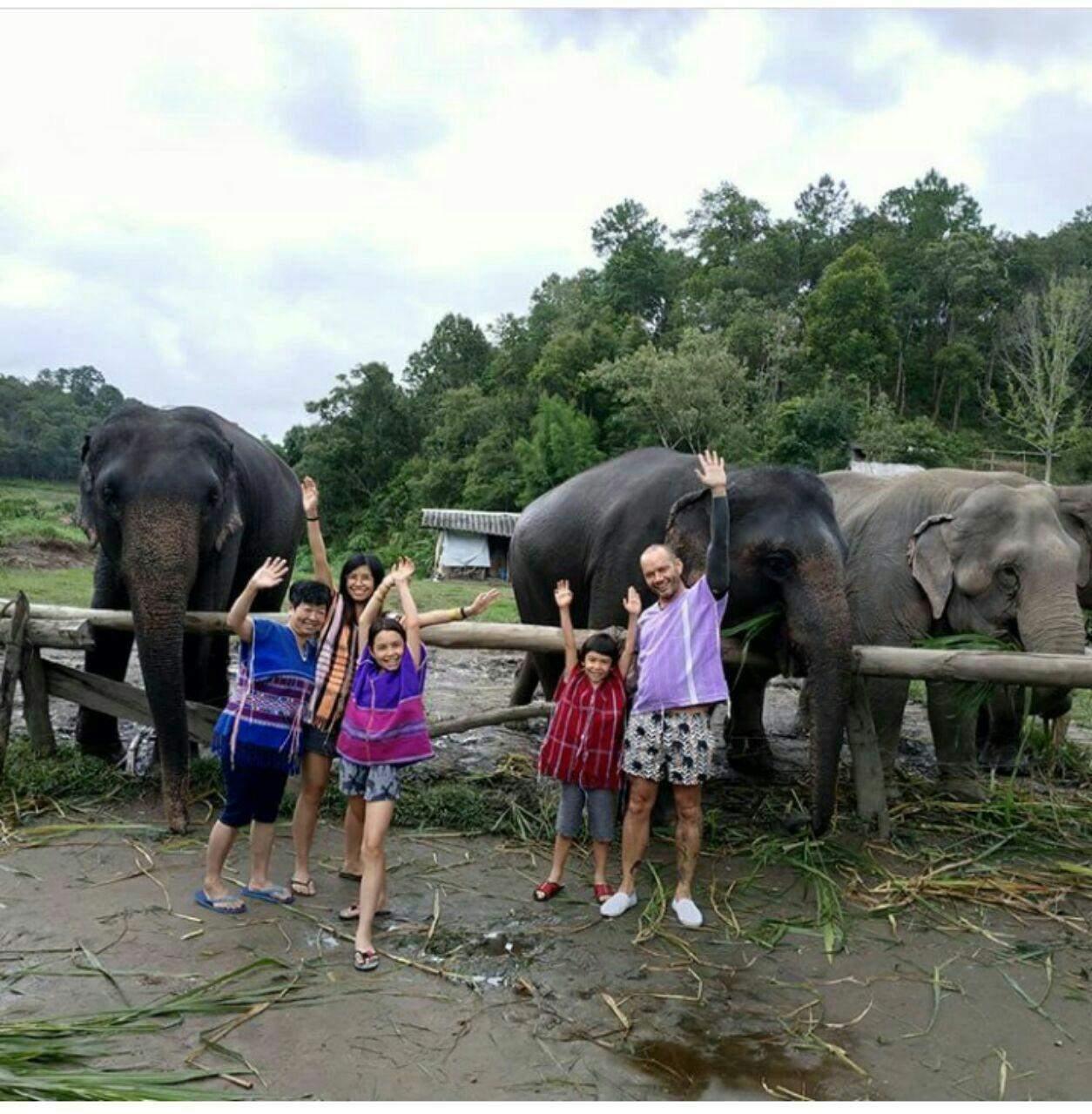 97 12 c33 570 - زندگی مشترک خانواده ای با فیل ها
