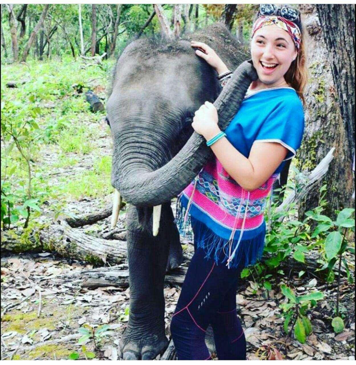 97 12 c33 571 - زندگی مشترک خانواده ای با فیل ها