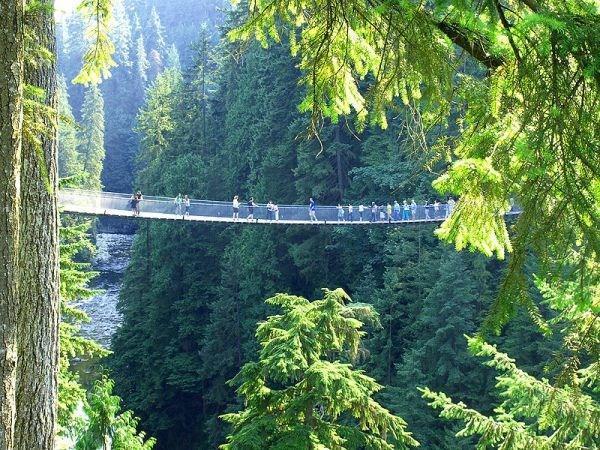 97 12 c35 687 - عجیبترین پلهای دنیا