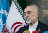 علیاکبر صالحی,اخبار سیاسی,خبرهای سیاسی,سیاست خارجی
