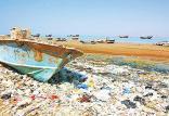 حفاظت از محیط زیست,اخبار اجتماعی,خبرهای اجتماعی,محیط زیست