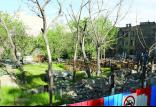 تخریب باغ های غیرمجاز در تهران,اخبار اجتماعی,خبرهای اجتماعی,شهر و روستا