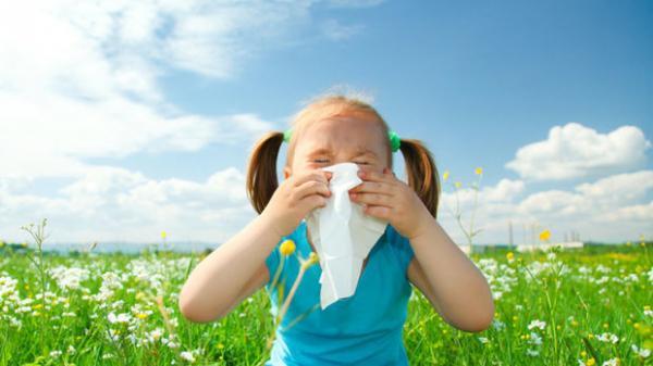 تشدید فصل آلرژی,اخبار پزشکی,خبرهای پزشکی,تازه های پزشکی