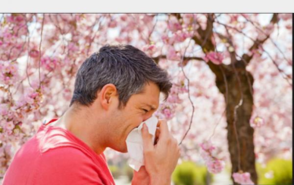 آلرژی در فصل بهار,اخبار پزشکی,خبرهای پزشکی,مشاوره پزشکی