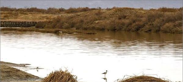 بخش قابل توجهی از تالاب گاوخونی هنوز آبگیری نشده است