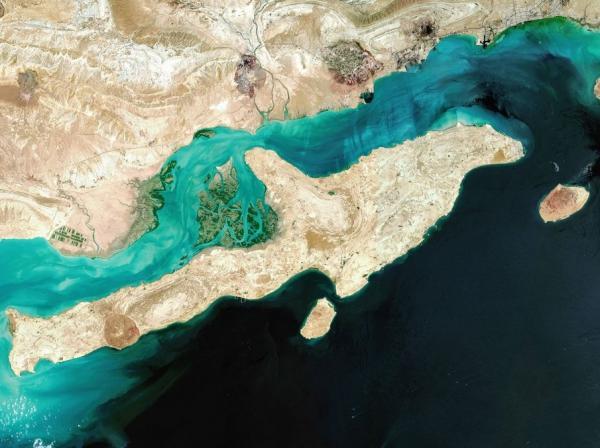 خلیج فارس,اخبار اجتماعی,خبرهای اجتماعی,محیط زیست