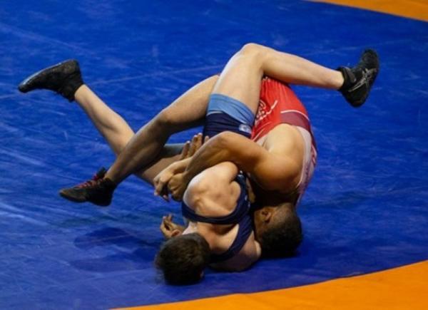 رقابت های کشتی فرنگی قهرمانی آسیا,اخبار ورزشی,خبرهای ورزشی,کشتی و وزنه برداری