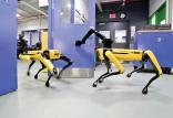 روبات اسپات مینی,اخبار علمی,خبرهای علمی,اختراعات و پژوهش