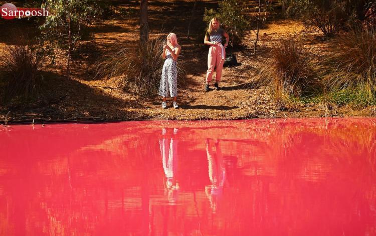 تصاویر دریاچه های صورتی استرالیا,عکس دریاچه صورتی در استرالیا,تصاویر دریاچه های داخلی در پارک Westgate در ملبورن
