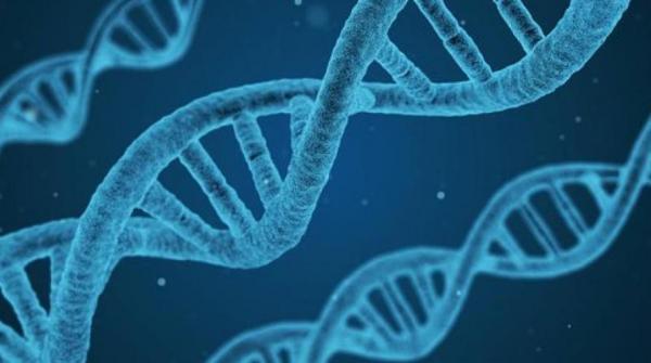 ژن های مرتبط با بیماری روانی,اخبار پزشکی,خبرهای پزشکی,تازه های پزشکی