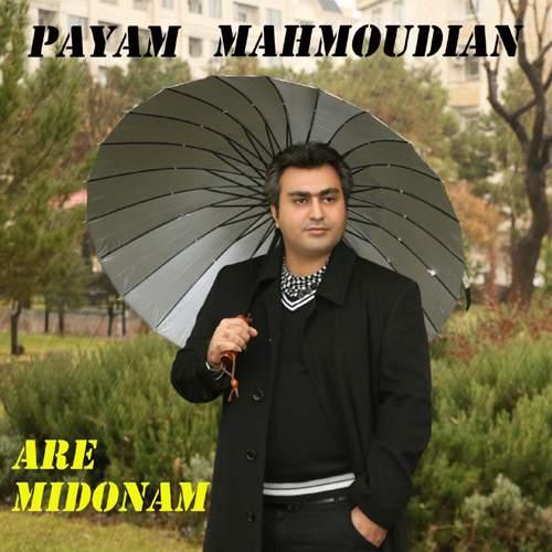 پیام محمودیان,اخبار هنرمندان,خبرهای هنرمندان,موسیقی