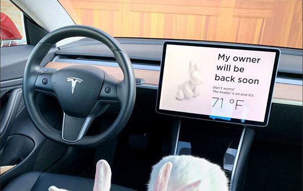 خودروهای خودران,اخبار خودرو,خبرهای خودرو,بازار خودرو