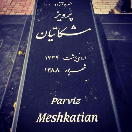 پرویز مشکاتیان,اخبار هنرمندان,خبرهای هنرمندان,موسیقی