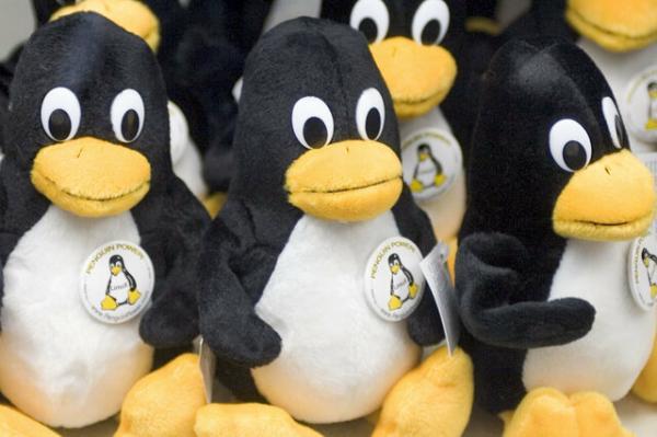 سیستم عامل لینوکس,اخبار دیجیتال,خبرهای دیجیتال,اخبار فناوری اطلاعات