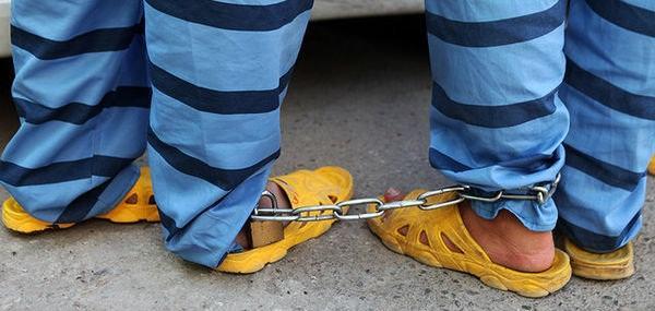 از دستگیری سارق تلفنهای هوشمند تا سرقت احشام در تایباد