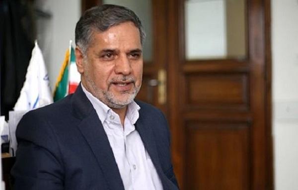 سید حسین نقوی حسینی,اخبار سیاسی,خبرهای سیاسی,مجلس