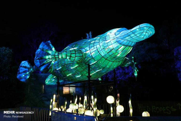تصاویر نمایشگاه مجسمه های درخشان در استرالیا,عکس های دیدنی,تصاویر نمایشگاه حیوانات درخشان در سیدنی
