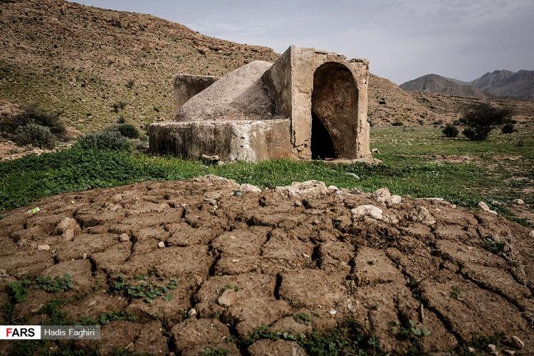 عکس طبیعت گــــراش,تصاویر طبیعت گــــراش,عکس طبیعت گــــراش در شیراز