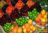 میوه,اخبار اقتصادی,خبرهای اقتصادی,کشت و دام و صنعت