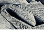 روزنامه,اخبار فرهنگی,خبرهای فرهنگی,رسانه