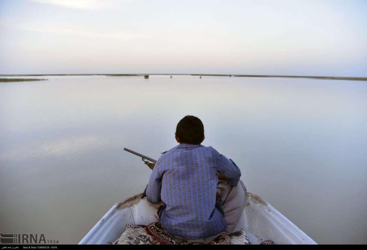 تصاویر حیات مجدد دریاچه هامون,عکس های حیات مجدد دریاچه هامون,تصاویردریاچه هامون