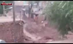 فیلم/ سیل در کلات نادری؛ تخریب شدید خانهها