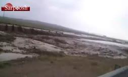 فیلم/ سیلاب در مسیر جاده کاریزنو به تربت جام