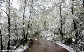 تصاویر برف زمستانی در مازندران,تصاویر دیدنی از مازندران,عکس های جذاب از برف مازندران
