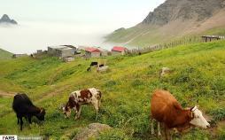 تصاویر مناظر زیبای کوه هاچاقیه,عکس های طبیعت زیبای شهر چوبر,عکس های مناظر زیبای استان گیلان