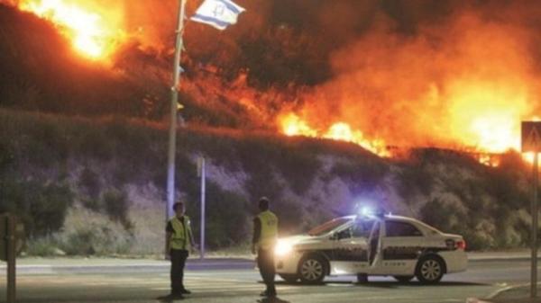 آتش سوزی در اسرائیل,اخبار حوادث,خبرهای حوادث,حوادث امروز