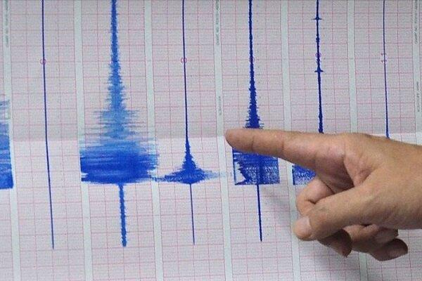 زلزله در نیوزیلند,اخبار حوادث,خبرهای حوادث,حوادث طبیعی