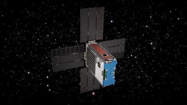 ارسال موجود زنده به اعماق فضا,اخبار علمی,خبرهای علمی,نجوم و فضا