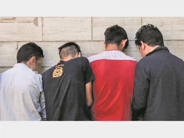 دستگیری سارقان منازل,اخبار حوادث,خبرهای حوادث,جرم و جنایت