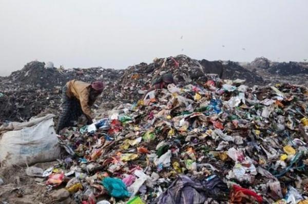 آلودگی محیط زیست,اخبار علمی,خبرهای علمی,طبیعت و محیط زیست