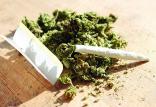 مصرف ماریجوانا در میان دانش آموزان,اخبار اجتماعی,خبرهای اجتماعی,آسیب های اجتماعی