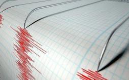 زلزله در نیوزلند,اخبار حوادث,خبرهای حوادث,حوادث طبیعی