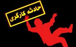 سقوط کارگران در در حوضچه آمونیاک,کار و کارگر,اخبار کار و کارگر,حوادث کار