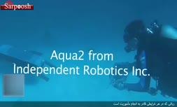 فیلم/ رباتی که در هر شرایطی مأموریتش را انجام میدهد