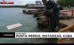فیلم/ نقاشی روی بوم در اعماق دریا!