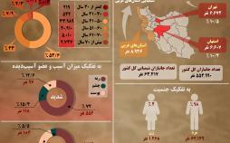 اینفوگرافیک وضعیت جانبازان شیمیایی در ایران
