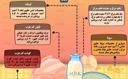 اینفوگرافیک منابع اصلی برای دریافت پروتئین