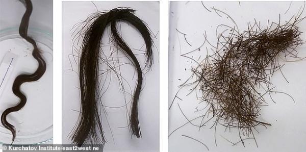 کشف موهای مومیایی ها,اخبار جالب,خبرهای جالب,خواندنی ها و دیدنی ها