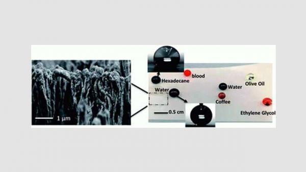 پلاستیک نوری انعطافپذیر,اخبار علمی,خبرهای علمی,پژوهش