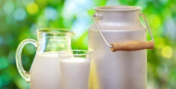 شیر,اخبار پزشکی,خبرهای پزشکی,تازه های پزشکی
