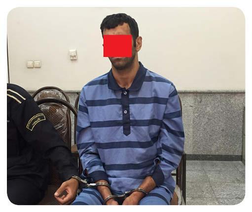 دستگیری سارق,اخبار حوادث,خبرهای حوادث,جرم و جنایت
