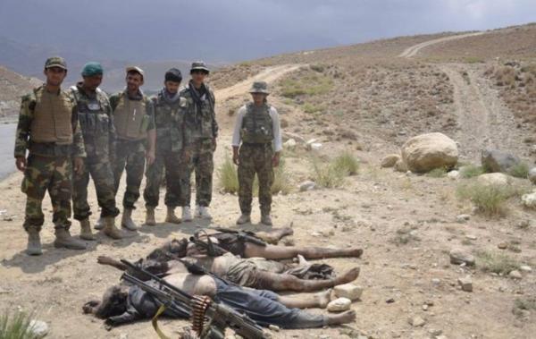 کشته شدن طالبان در افغانستان,اخبار افغانستان,خبرهای افغانستان,تازه ترین اخبار افغانستان