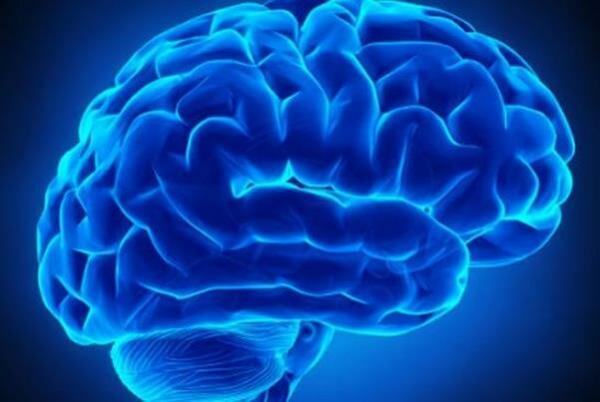 زنده ماندن مردی با نیمی از مغزش,اخبار پزشکی,خبرهای پزشکی,بهداشت