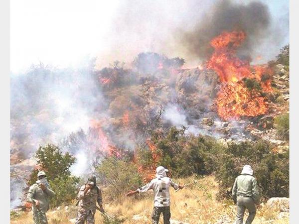 اطفای حریق جنگلهای کشور,اخبار اجتماعی,خبرهای اجتماعی,محیط زیست