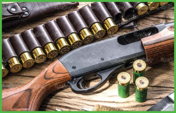 سلاح شکاری,اخبار حوادث,خبرهای حوادث,جرم و جنایت